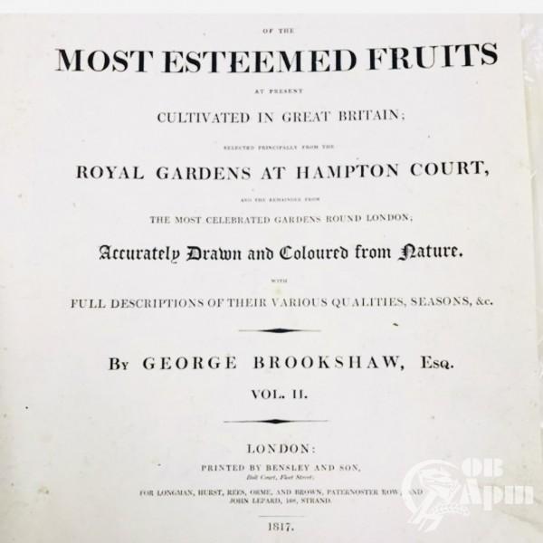 Старинные английские гравюры «Фрукты» 1817 год