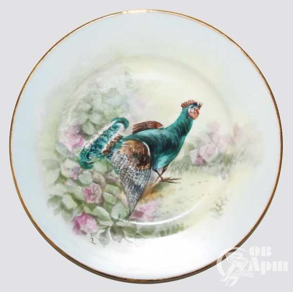 Тарелки с изображением разных птиц